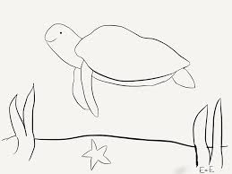 world sea turtle day the adventures of ellie and edmond