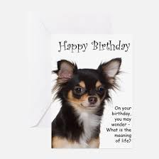 chihuahua greeting cards cafepress
