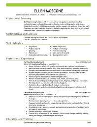 Computer Technician Resume Template Lab Technician Resume Computer Technician Resume Samples Template
