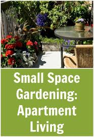 small space gardening apartment living tots family parenting