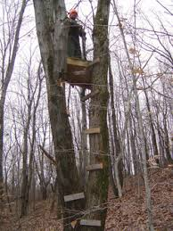 had your treestand stolen archive maryland shooters