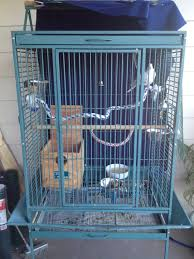 how to keep birds away from patio how to choose a cage for pigeons or doves