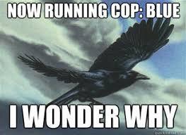 Storm Crow Meme - storm crow meme tumblr