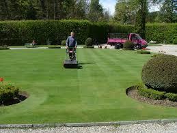 cura giardino gestione parchi e giardini