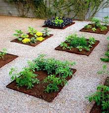 Small Backyard Vegetable Garden by Fabulous Small Backyard Vegetable Garden Ideas Z7uwrx1g