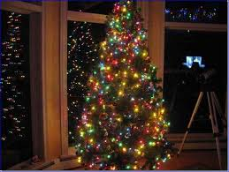 tree decorating ideas multi colored lights home design