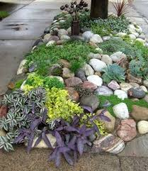 330 best rock gardens images on pinterest plants rock garden