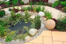 unusual rock garden ideas interesting decoration design of