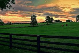 kentucky backroads map kentucky backroads kentucky is known as the hors flickr
