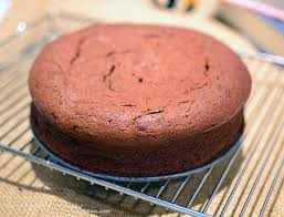 nigella u0027s nutella cake recipe u0026 blog anniversary ms i hua u0026 the boy