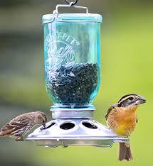 decorative bird feeders unique backyard bird feeders
