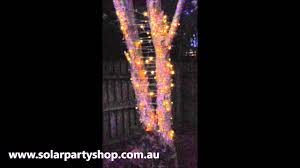 warm white solar fairy lights solar party shop 100 warm white led solar fairy lights youtube