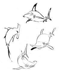 sharky malarkey hammerhead shark day 1 of the shark week sketch