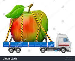 delivery fruit road transportation apple fruit delivery big stock vector