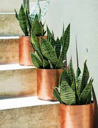 those copper pots u2022 just because i love it u2022 pinterest
