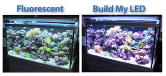led aquarium lights for reef tanks build my led archives reef builders the reef and marine aquarium