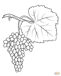 grape leaf coloring page kids drawing and coloring pages marisa
