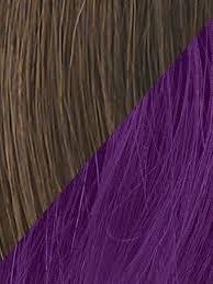 Dark Purple Colors 23