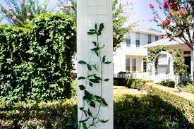 product feature the new trellis works column trellis