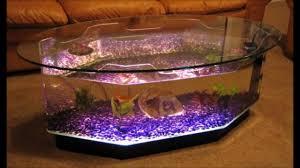 aquarium designs youtube