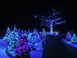 Botanical Gardens Atlanta Christmas Lights by Best Place To See Christmas Lights Christmas Lights Decoration