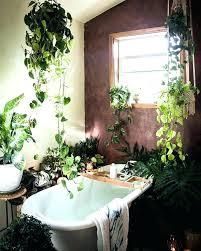 safari bathroom ideas jungle bathroom decor bathroom decor sets small bathroom