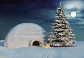 igloo with christmas tree bestwallsite com