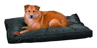 Costco Dog House Costco Dog Bed Extra Large Dog Beds By Mammoth Lifetime Warranty