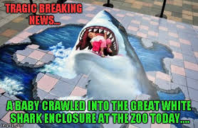 Funny Shark Memes - fortunately the shark did not harm him so it being erased was