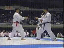 imagenes gif karate kumite gifs get the best gif on giphy