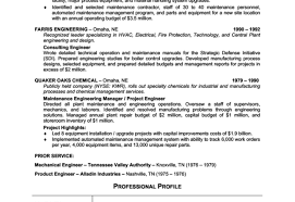 technical resume writing services resume professional resume writing services charismatic