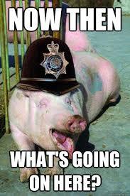Funny Pig Memes - police pig memes quickmeme