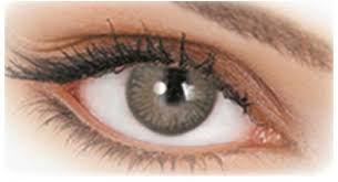 light grey contact lenses price review and buy adore contact lenses for unisex tri light