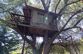 how to build a tree house tips and photos dizainall
