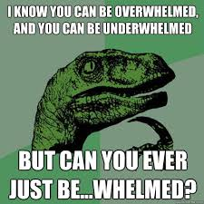 Overwhelmed Memes - i know you can be overwhelmed and you can be underwhelmed but can
