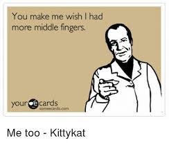 Make An Ecard Meme - you make me wish i had more middle fingers your ecards someecardscom