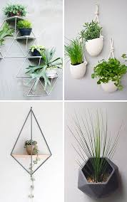 Modern Hanging Planters by Best 25 Wall Mounted Planters Ideas On Pinterest Small Kitchen