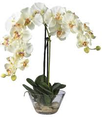 Silk Flowers Arrangements - phalaenopsis with glass vase silk flower arrangement traditional