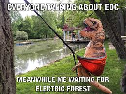 Edc Meme - seeing all this edc stuff and i m just like electricforest