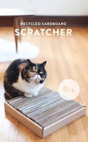 Cat Scratcher Replacement Pads Best 25 Cat Scratcher Ideas On Pinterest Cat Houses Cat Room