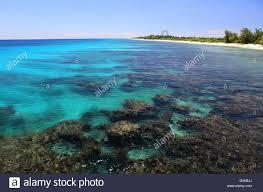 coral reef in clear ocean water christmas island kiribati stock