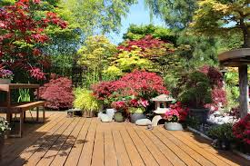 Deck Garden Ideas 35 Patio Potted Plant And Flower Ideas Creative And Lovely Photos