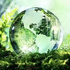 bicchieri di plastica sono riciclabili ecologico