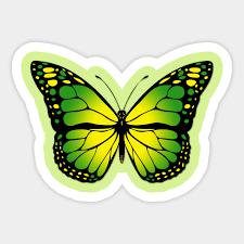 green butterfly butterfly sticker teepublic