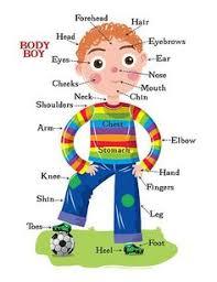 clothes vocabulary bilgi pinterest learning english