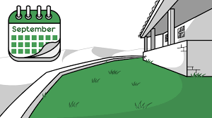how to overseed a lawn 14 steps with pictures wikihow