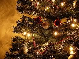 winter ornaments lights pretty tree winter photos