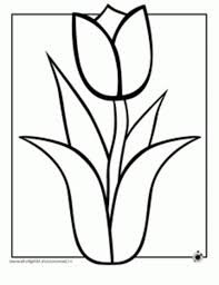 hawaii flower coloring page free download