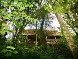 sunridge treehouse yealmpton devon south hams england