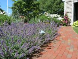 26 best landscaping ideas images on pinterest landscaping ideas